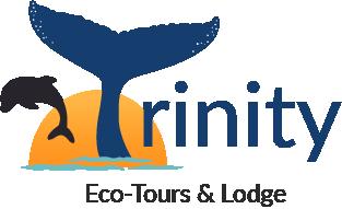 Trinity Eco Tours Logo