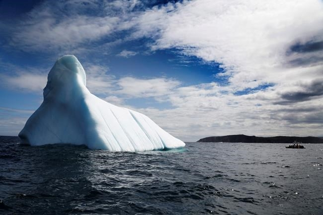 Featured in Canadian Press – Newfoundland Iceberg Tours Draw More Visitors as Climate Warms
