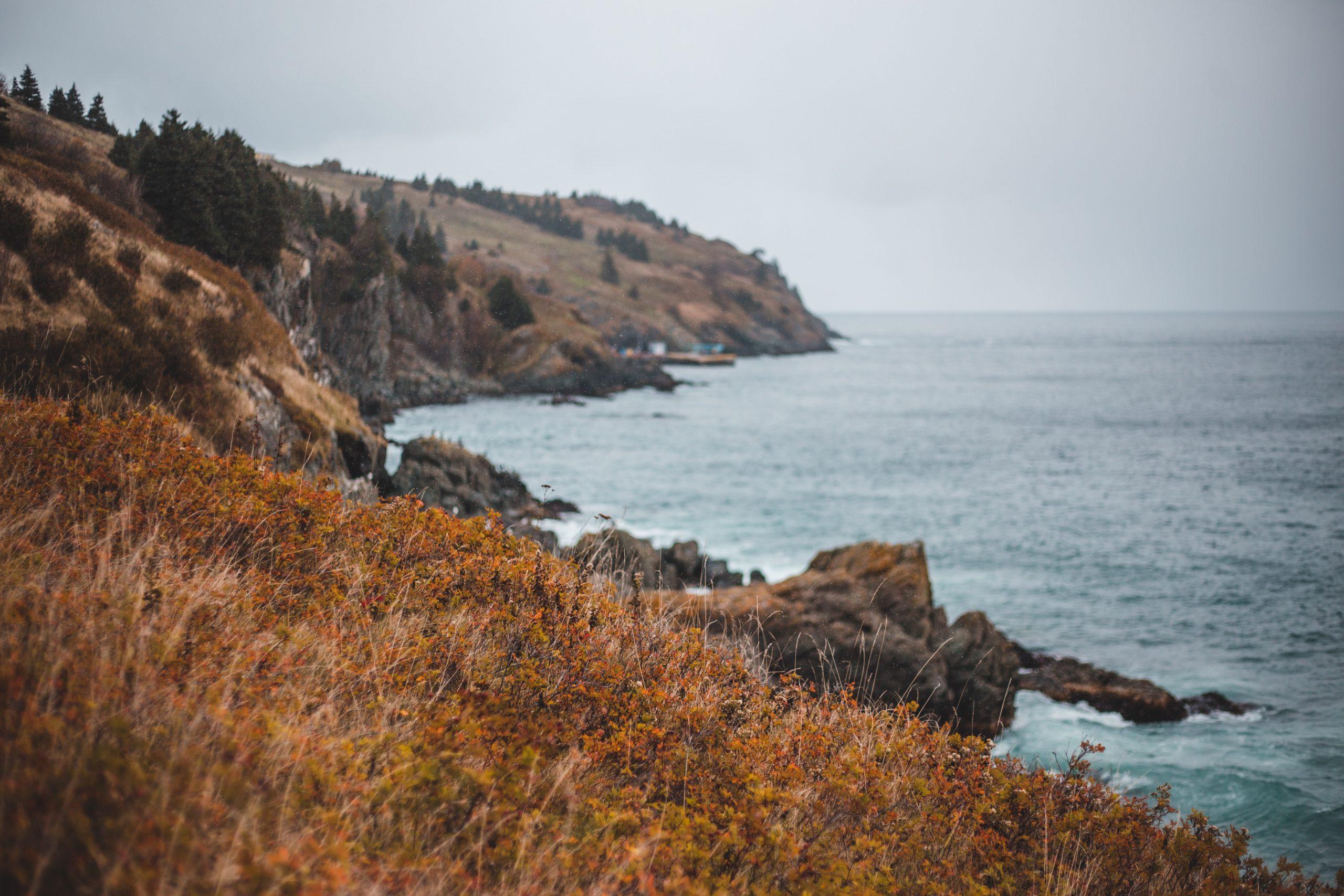 Scenic coastline of Newfoundland