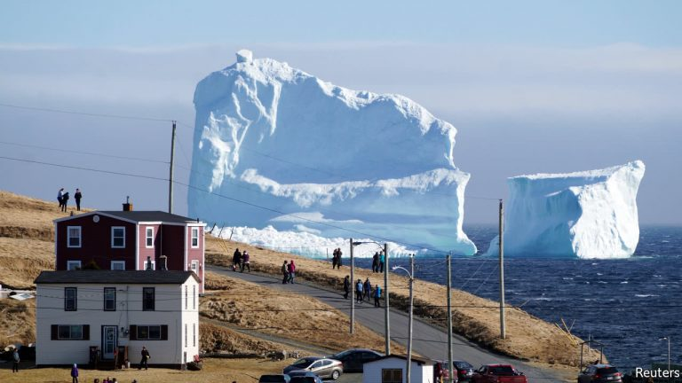 Featured on CBC – Where Are All The 'Bergs?