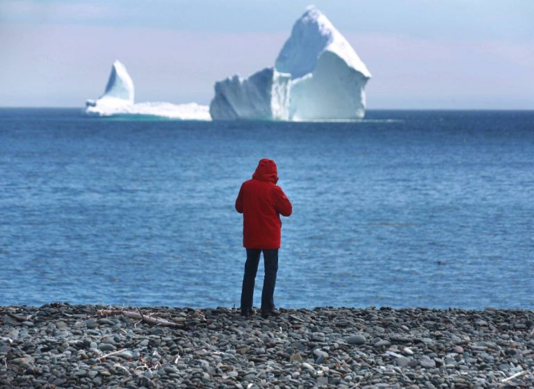 Featured on Canadian Press – Newfoundland Tour Operators Optimistic Despite Bleak Start to Iceberg Season